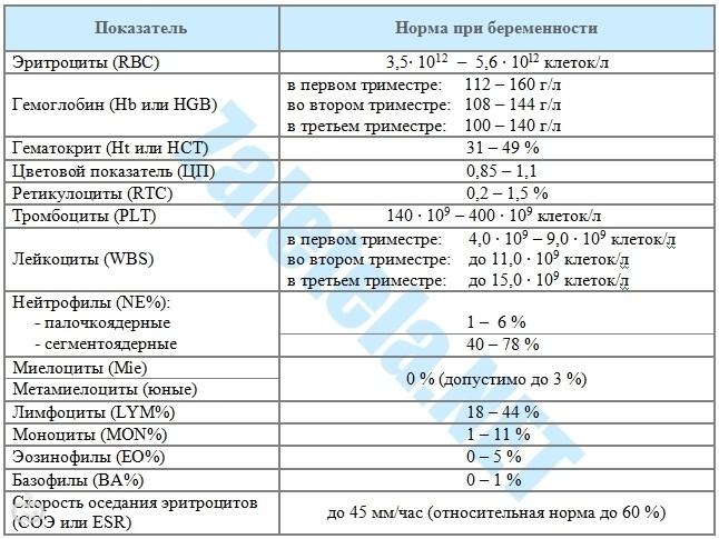 Оак при беременности нормы – Анализ крови при беременности: расшифровка и нормы показателей