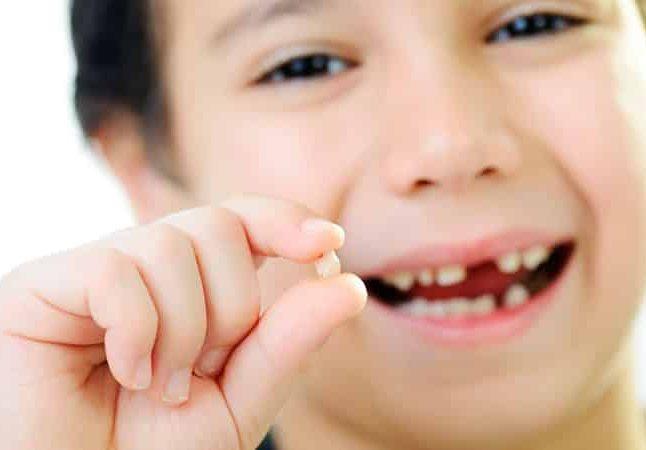 Когда выпадает первый молочный зуб – Когда выпадают молочные зубы у детей: 4 врачебных запрета
